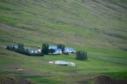 Islannissa oli paljon kirkkaan sinisiä kattoja