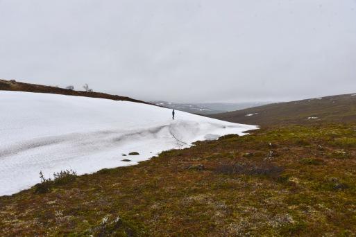 tämä lumi tuskin sulaa ennen elokuuta