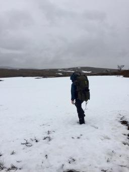 Lumi upotti ja kantoi